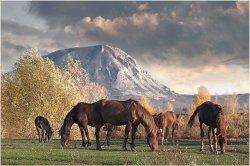 У подножия башкирской горы Торатау пройдёт этнический фестиваль